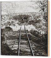Western Tracks Wood Print