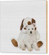 Westie Puppy And Teddy Bear Wood Print