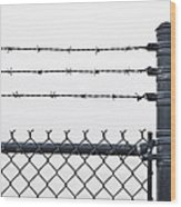 Wet Barbed Wire Fence In Heavy Fog E69 Wood Print