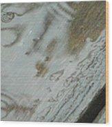 Wet Deck Wood Print