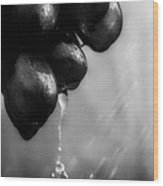Wet Grapes Wood Print by Bob Orsillo