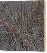 Wet Grasses After A Summer Rain Wood Print