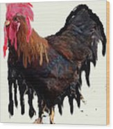 Wet Rooster Wood Print