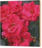 Wet Roses Wood Print by Debbie Sikes