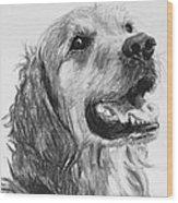 Wet Smiling Golden Retriever Shane Wood Print
