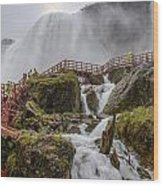 Wet Walk Wood Print