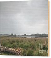 Wetland 1 Wood Print