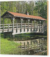 Wetland Footbridge Wood Print