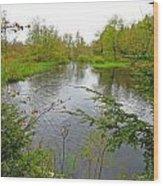 Wetland Greens Wood Print
