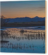 Wetland Twilight Wood Print