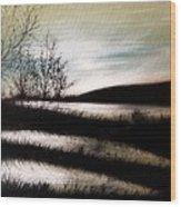 Wetland Visit Wood Print
