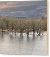 Wetlands At Columbia River Gorge Wood Print