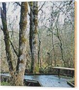 Wetlands In March Wood Print