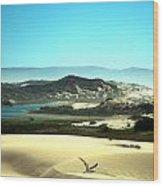 Wetlands In The Dunes Wood Print