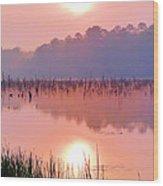 Wetlands Sunrise Wood Print by JC Findley