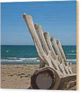 Whale Bones On The Beach Wood Print by Robert Bascelli