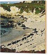 Whale Rock Beach Wood Print