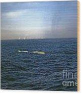 Whale Show Wood Print