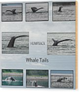 Whale Tails Wood Print