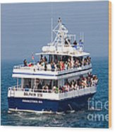 Whale Watching Boat Wood Print
