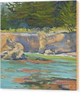 Whalers Cove Point Lobos Wood Print by Rhett Regina Owings