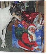 What Did Santa Bring Me Wood Print