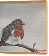 What Will The Robin Do Then Wood Print
