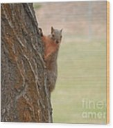 What's Up? Wood Print by Margaret McDermott