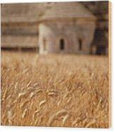Wheat At The Abbaye Wood Print