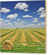 Wheat Farm Field And Hay Bales At Harvest In Saskatchewan Wood Print