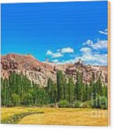 Wheat Farming At Basgo Ladakh Wood Print