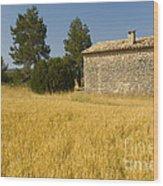 Wheat Field, France Wood Print