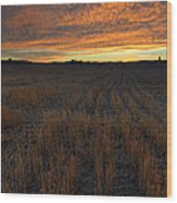 Wheat Stubble Sunset Wood Print by Mike  Dawson