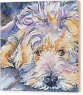 Wheaten Terrier Painting Wood Print