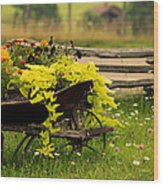 Wheel Barrow Of Flowers Wood Print