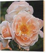 Wheeping Rose Wood Print