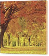 When Autumn Leaves Fall Wood Print