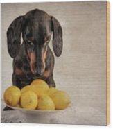 When Life Gives You Lemons... Wood Print