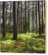 When The Forest Beckons Wood Print by Karen Wiles