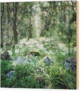 Where Fairies Dwell Wood Print by Gun Legler