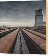 Where It Goes-2 Wood Print by Fran Riley