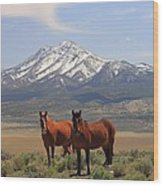 Where The Mustangs Roam Wood Print