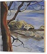 'where The Rocks Meet The Sea' Wood Print