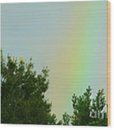 Where's My Pot Of Gold? Wood Print