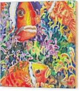 Where's Nemo I Wood Print by Ann  Nicholson