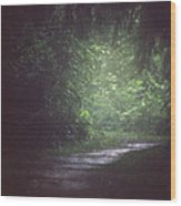 Wherever The Path May Lead Wood Print
