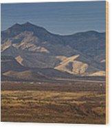 Whetstone Mountains At Sunset Wood Print