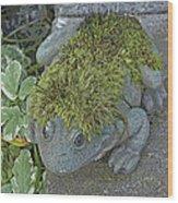 Whimsical Frog Wood Print