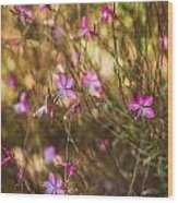 Whirling Butterfly Bush Wood Print