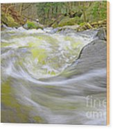 Whirlpool In Forest Wood Print